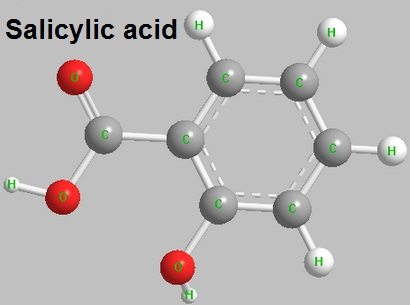 The structure of salicylic acid